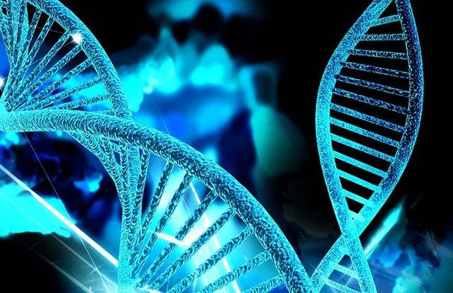 یافته محققان در زمینه ژن های دخیل در فرایند پیری سلول ها