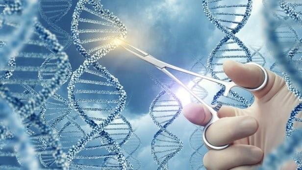 درمان سادهتر بیماریها با نمونه مینیاتوری فناوری کریسپر
