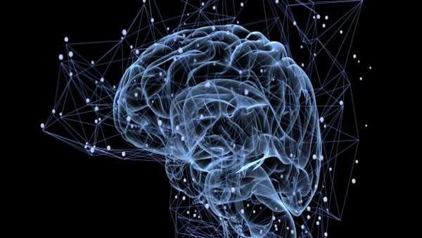 تحقیقات جدید پتانسیل بازسازی مغز را ممکن تر ساخت