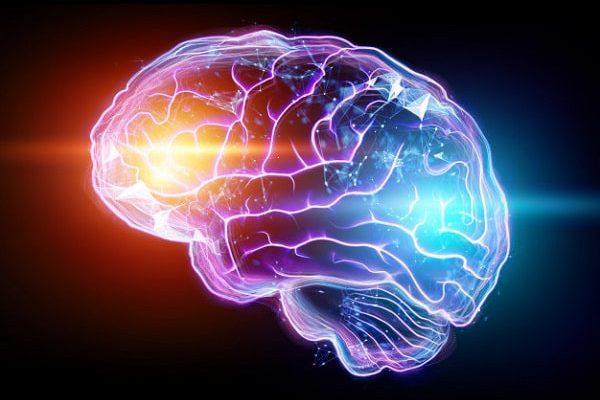 اهداف دارویی جدید برای تقویت حافظه