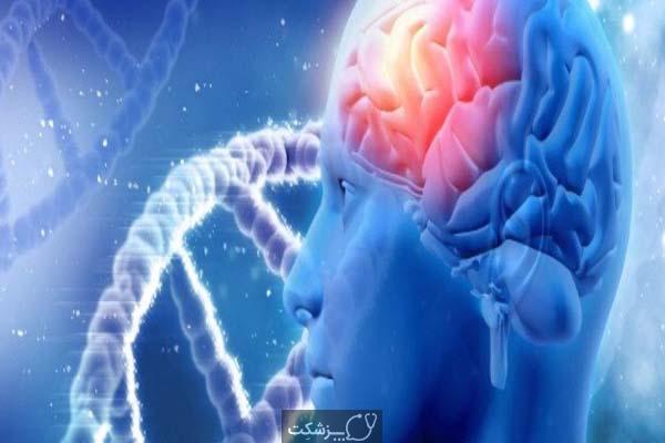 چگونه تبدیل سلول های گلیال به نورون ها می تواند در درمان گلیوبلاستوما کمک کند؟